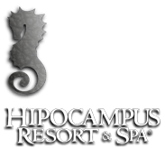 Hipocampus Resort & Spa